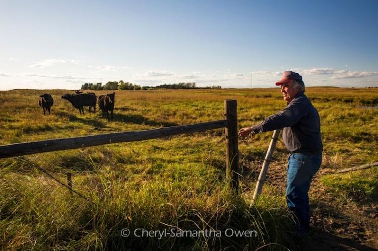 Lynn Ballagh surveys his land (Image Credit: Cheryl-Samantha Owen)